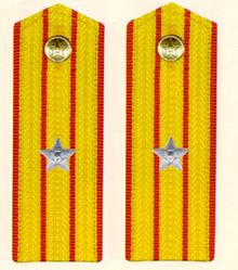 中国人民解放军军衔及其肩章图片